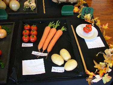 Tray of vegetables