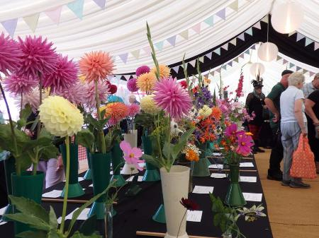 The dahlia display. Photo by Lorna Neville