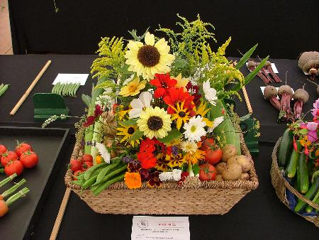 Winning harvest basket by Shirley Masters