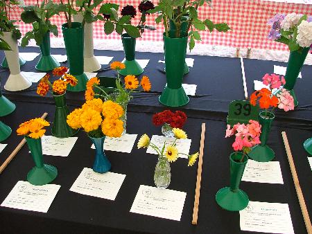 Marigolds and geranium classes